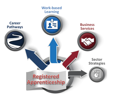 Registered apprenticeship pointing to four circles: Career pathways, work-based learning, business services, sector strategies.